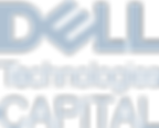 DellTech_Capital_Blue_Gry_2.png