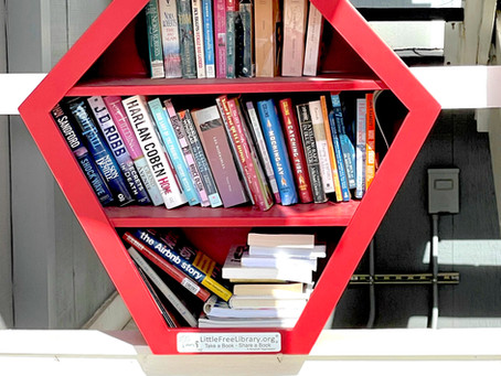 A Look Back: The Little Free Library 2020 Round-Up!