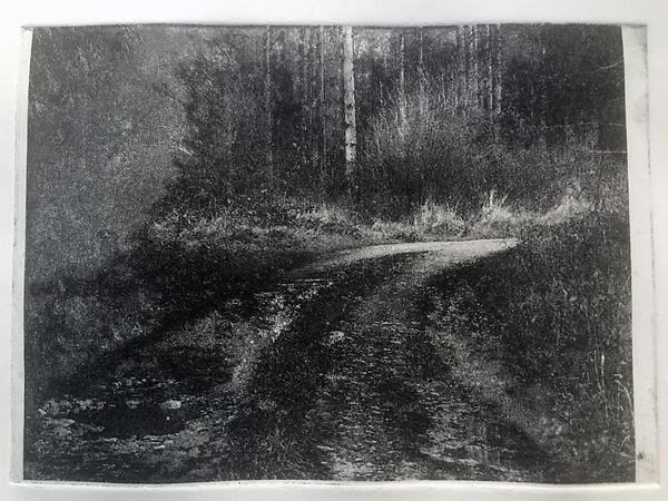 the path IMG_1834.jpg