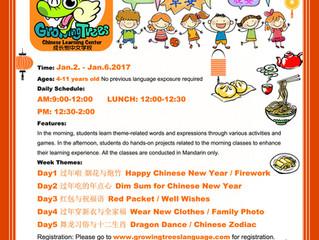 2017 Mandarin Winter Camp