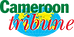 logo-cameroun-tribune.png