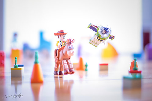 Course Toy Story