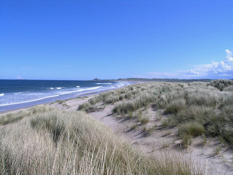 ross-back-sands-beach.jpg