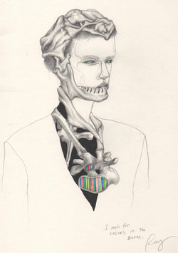 I seek for colors in the bones