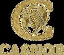 Casnor Logo