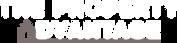The Property Advantage Logo