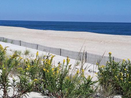 Leisure Point Resort, Long Neck Delaware