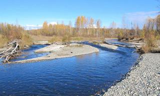 Montana Creek Campground, Talkeetna Alaska