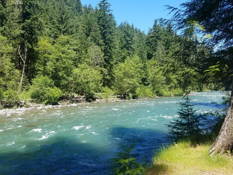 La Wis Wis Campground, Washington
