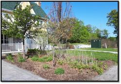 Carriage HOuse garden before 2.jpg