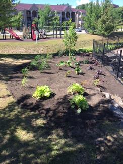 Patio garden 2.jpeg