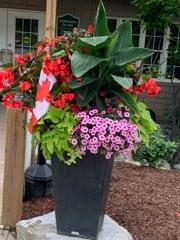 Canada Day Planter.jpg