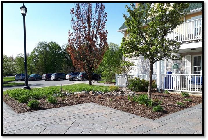 Carriage HOuse garden before 1.jpg