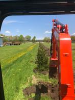 Tree Planting 2019