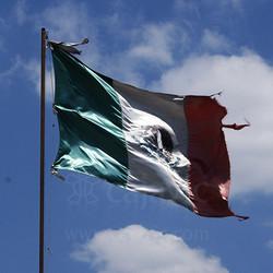 Bandera de México 9