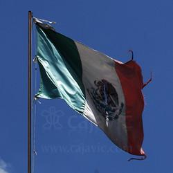 Bandera de México 6