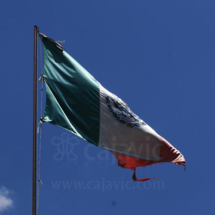 Bandera de México 5
