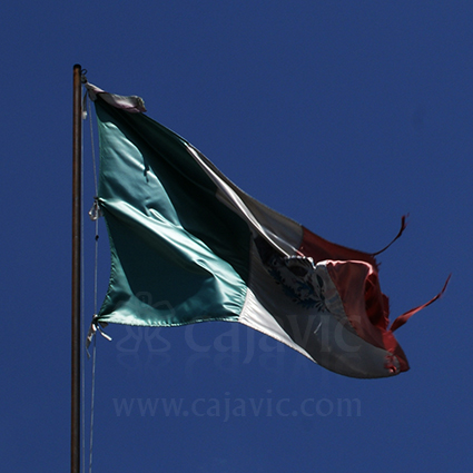 Bandera de México 7