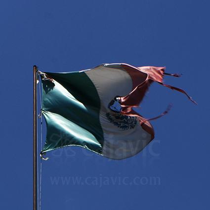 Bandera de México 1