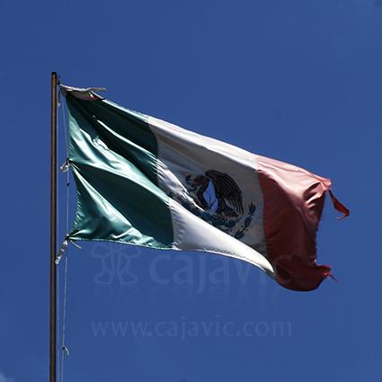 Bandera de México 8