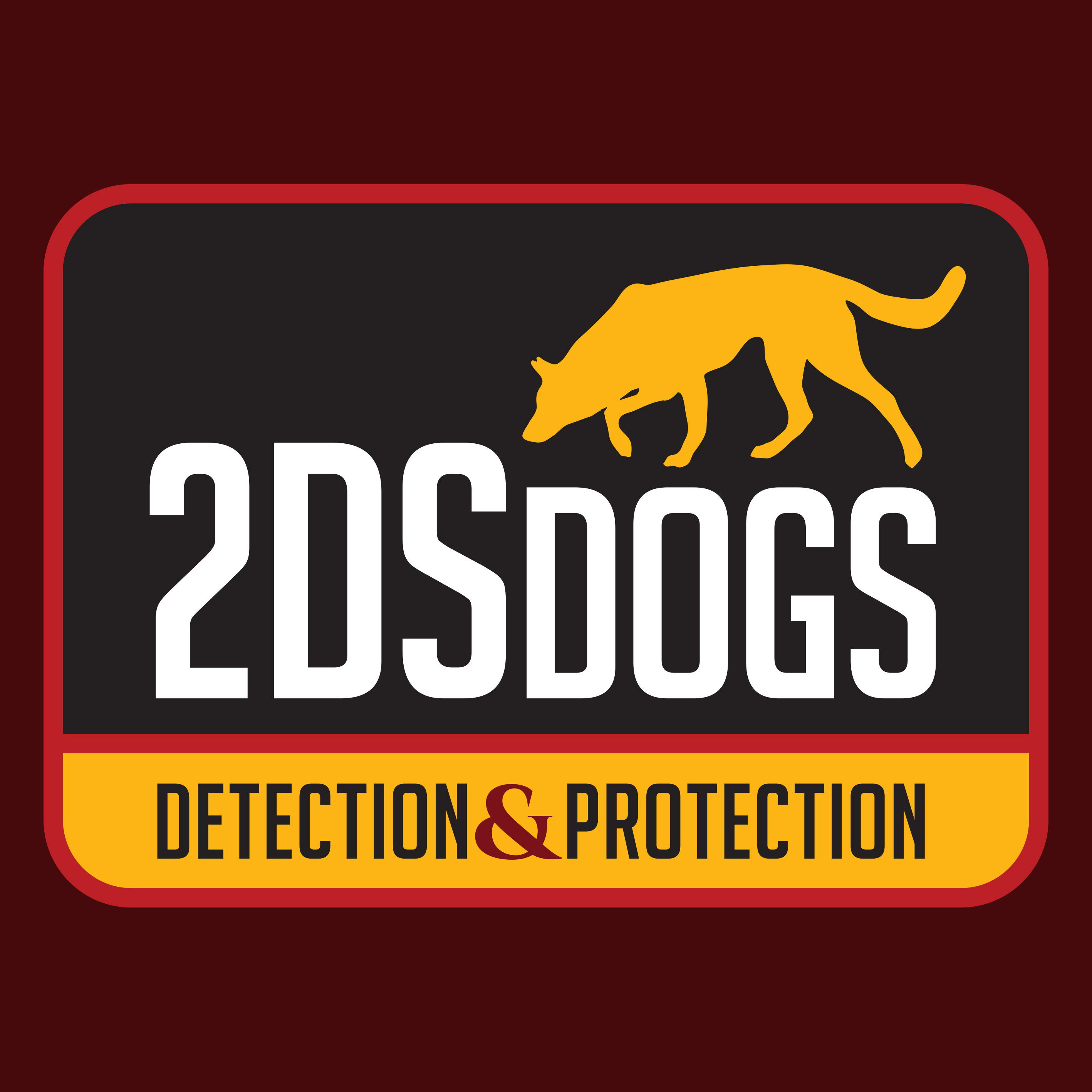 2DS Dogs