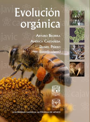 Evolucion Organica