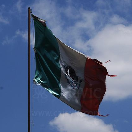 Bandera de México 11