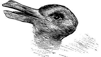 1. Talks, Ben - Pic2. duck or rabbit.jpg