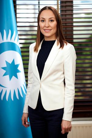 TÜRK KONSEYİ (Türk Dili Konuşan Ülkeler İşbirliği Konseyi)