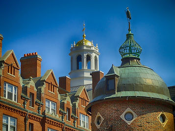 Harvard MBA Admissions Consultants