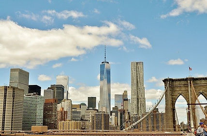 Best Pre-Med Schools in New York