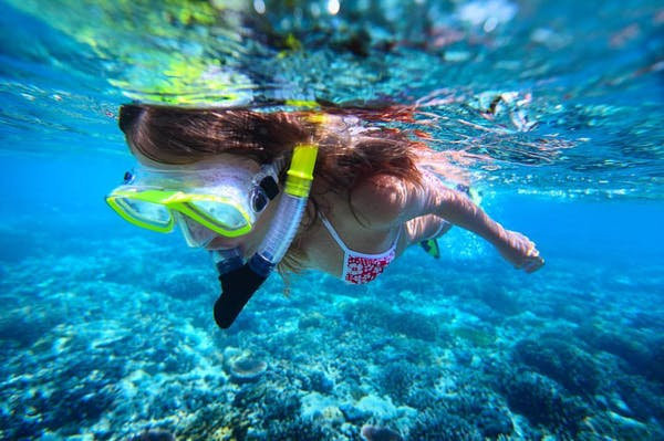 Check out our activities, come and have fun in Hawaii, enjoy your holidays