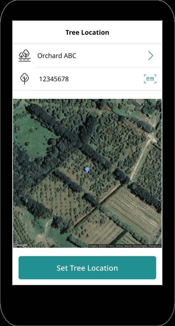 Tree Location Power App