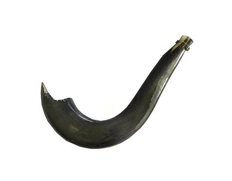 Moroccan shofar 42SHM4