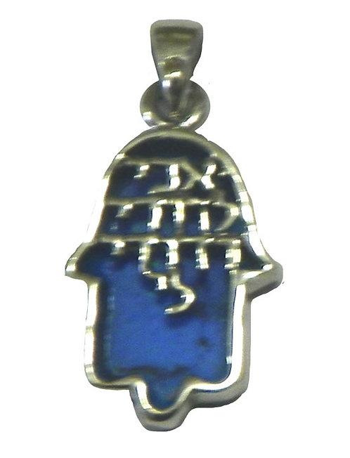 Hamsa necklace 8NP451