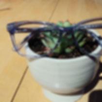 eyewear by michelle.jpg