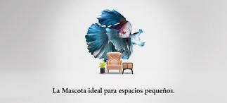 ESPACIOS_PEQUEÑOS_SALA.png