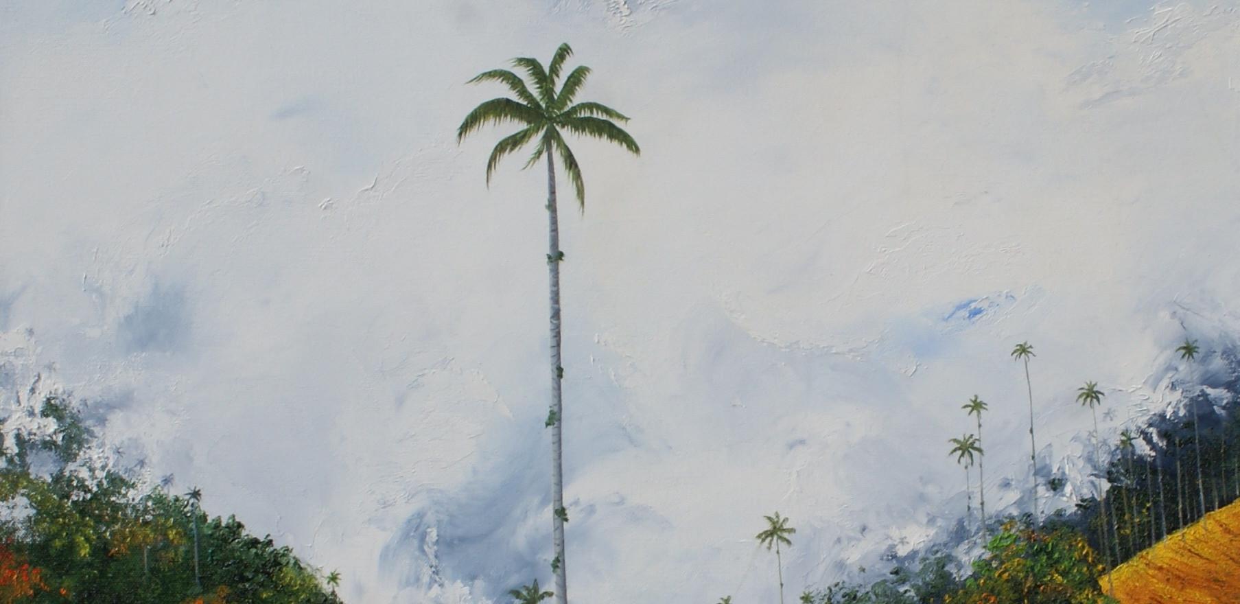 Sobreviviente: Palma de cera en el bosque de niebla