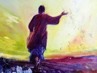 Reflexões sobre a Parábola do Semeador - parte 1