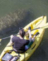 kayakspringschasco_orig.jpeg