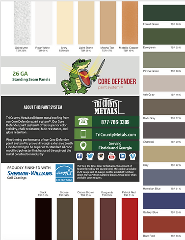 Core Defender Paint Standing Seam.png