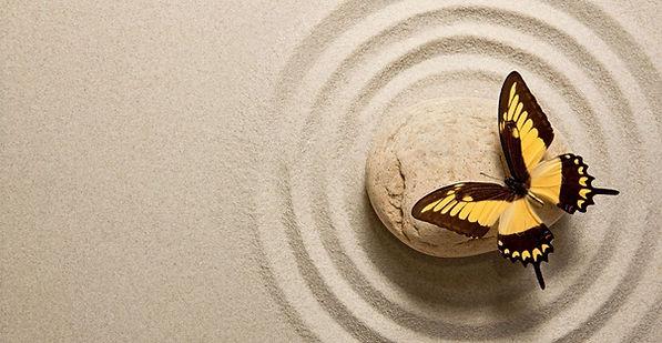 butterflySandSimple_edited.jpg