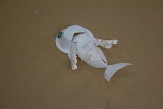 Shimmerfish