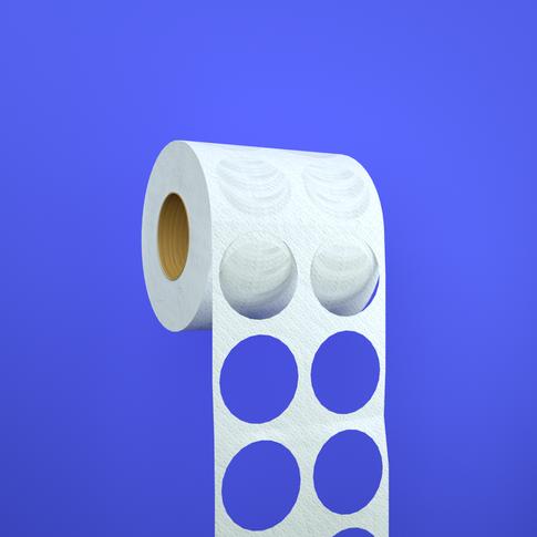 The Cringeworthy Toilet Paper