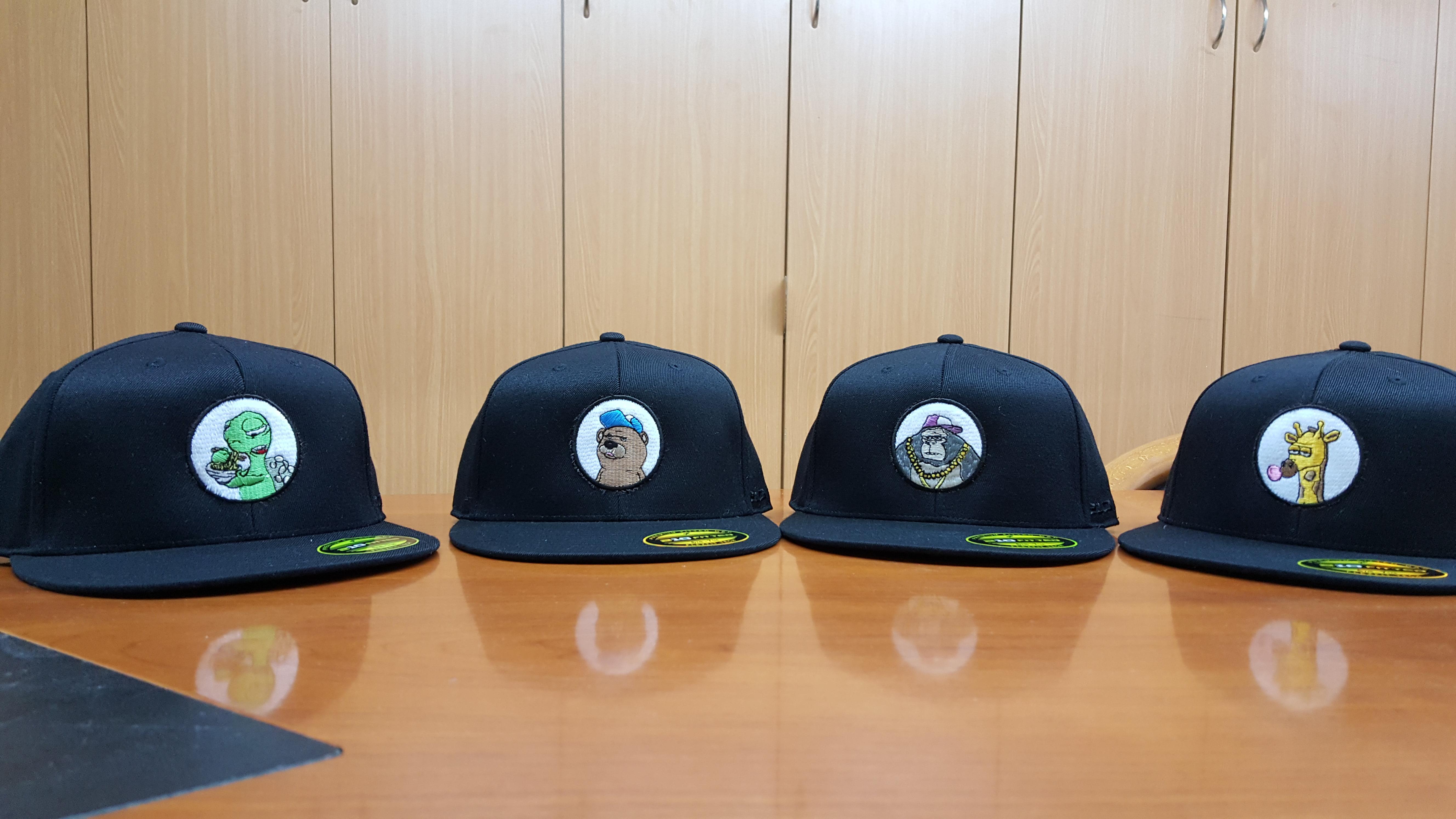 פלקספיט ישראל - כובעים מצחייה ישרה ב