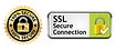ssl secure connection.webp
