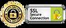 ssl secure connection.webp