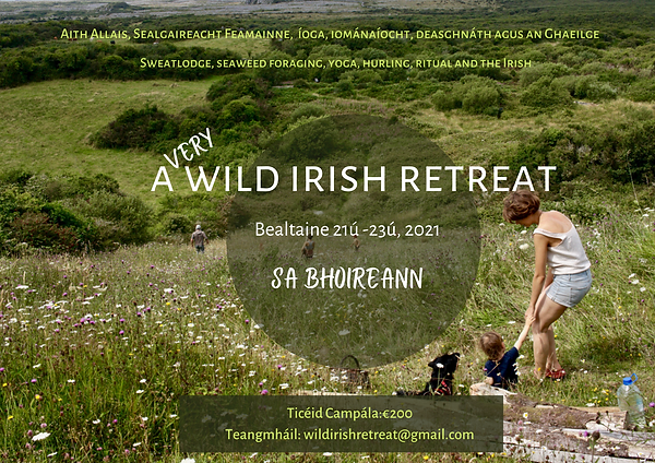 a very wild irish retreat(2).png