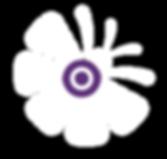 Conv-Fundaju_editable-03.png