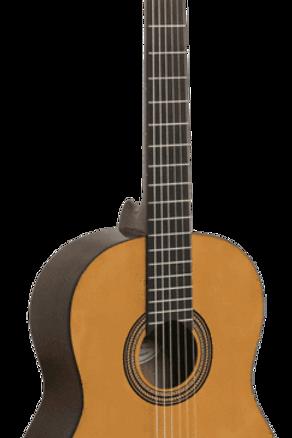 Valenica 3/4 Classical guitar